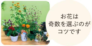 お花は奇数を選ぶのがコツです